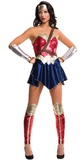 Dawn of Justice: Wonder Woman Costume - (Medium)