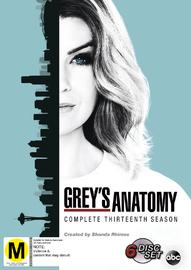 Grey's Anatomy - Season 13 on DVD