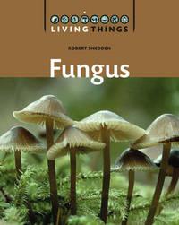 Fungus by Robert Snedden image