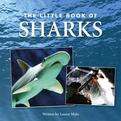 Little Book of Sharks by Louise Malo