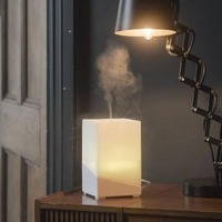 Ellia Hope Ultrasonic Essential Oil Diffuser/Colour Light Lamp (White)