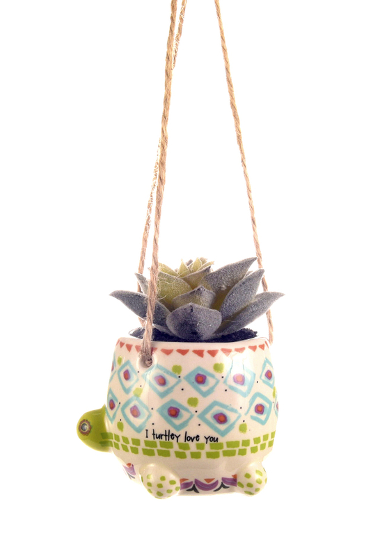 Natural Life: Mini Hanging Succulent - Turtle