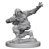 Pathfinder Deep Cuts: Unpainted Miniatures - Human Male Rogue