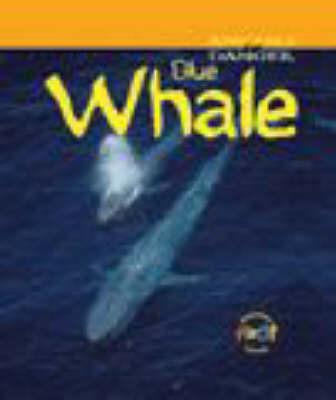 Whale by Rod Theodorou