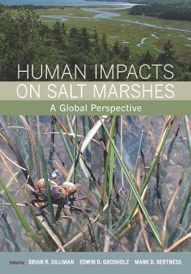 Human Impacts on Salt Marshes image