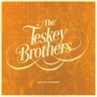 Half Mile Harvest (LP) by The Teskey Brothers image