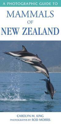 A Photographic Guide to Mammals of New Zealand by C. M. (Carolyn M.) King image