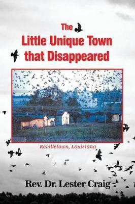 The Little Unique Town That Disappeared by Lester Craig