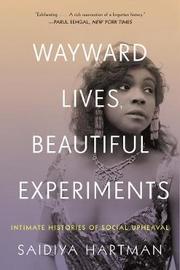 Wayward Lives, Beautiful Experiments by Saidiya Hartman