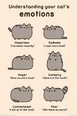 Pusheen (Cats Emotions) (709)