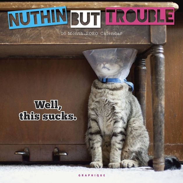 Nuthin' But Trouble 2020 Square Wall Calendar