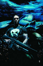 Punisher Max Vol.3 image