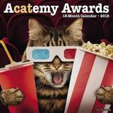 Acatemy Awards 2018 Wall Calendar by Willow Creek Press