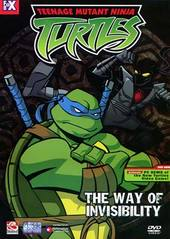 Teenage Mutant Ninja Turtles - Vol. 03: The Way Of Invisibility on DVD