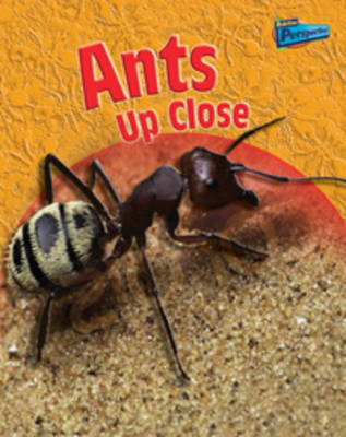 Ants Up-close by Robin Birch image