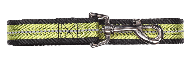 Pawise: Dog Reflective Leash - Green/Large (1.2m/25mm)