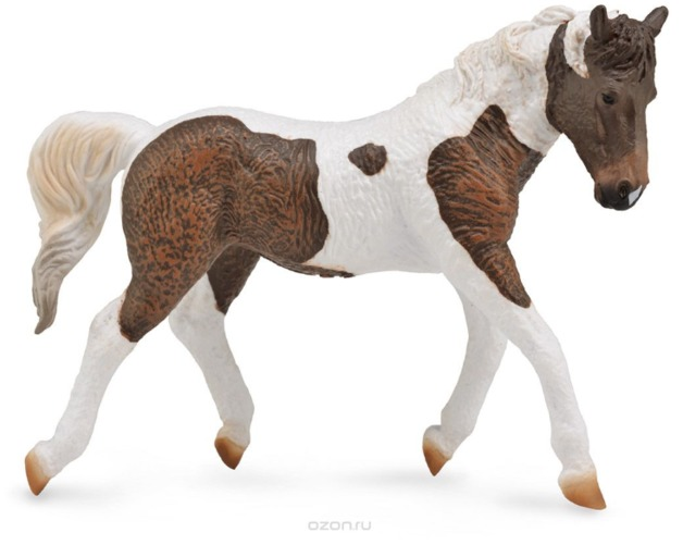 CollectA - Curly Mare