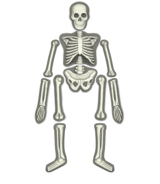 4M: Kidz Labs Glow Human Skeleton Mold