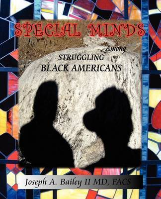 Special Minds Among Struggling Black Americans by Joseph A Bailey