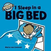 I Sleep in a Big Bed by Maria Van Lieshout
