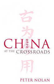 China at the Crossroads by Peter Nolan