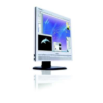 "Philips 17"" 170P6ES Silver DVI LCD TFT Flat Panel image"