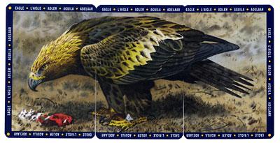 Fantastic Flyers image