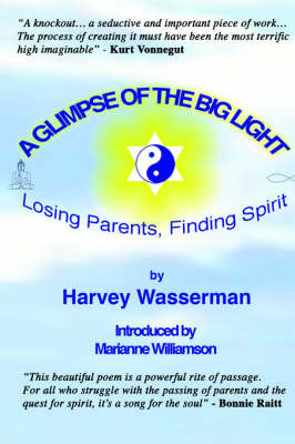 A Glimpse of the Big Light by Harvey , Franklin Wasserman
