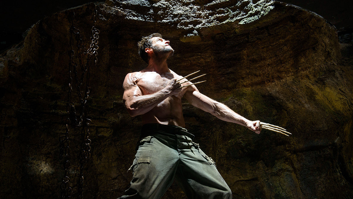 The Wolverine on DVD image