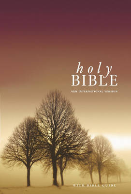 NIV Popular Bible: WITH Bible Guide image