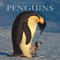 Penguins by Fritz Polking image