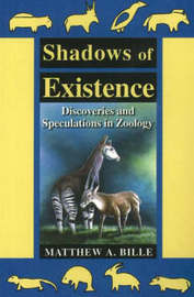 Shadows of Existence by Matthew A. Bille image