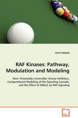 RAF Kinases by Armin Robubi image