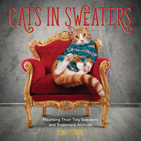 Cats in Sweaters by Jonah Stern