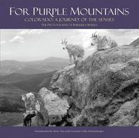 For Purple Mountains by Barbara Sparks image