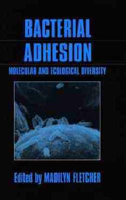 Bacterial Adhesion image