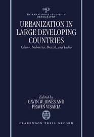 Urbanization in Large Developing Countries image