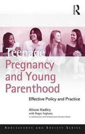 Teenage Pregnancy and Young Parenthood by Alison Hadley