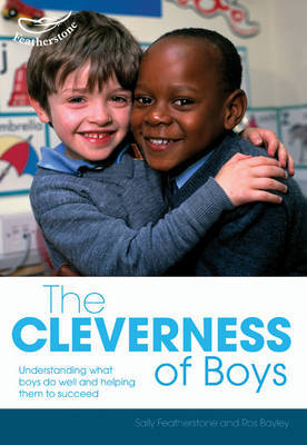 The Cleverness of Boys by Ros Bayley image