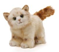 Gund: Mittens Kitten - Cat Plush (Tan)