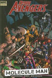 Dark Avengers: v. 2: Molecule Man Premiere by Brian Michael Bendis image