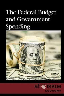 The Federal Budget and Government Spending image
