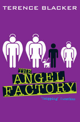 The Angel Factory by Terence Blacker image