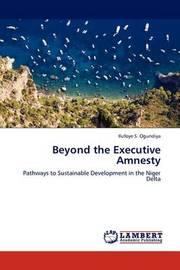 Beyond the Executive Amnesty by Ilufoye S. Ogundiya