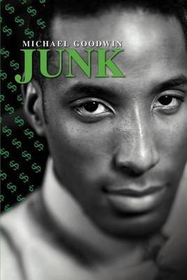 Junk by Michael Goodwin