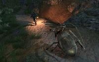 Arcania: Gothic 4 for Xbox 360 image