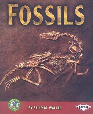 Fossils by Sally Walker