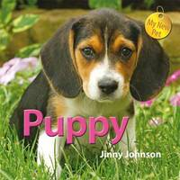 Puppy by Jinny Johnson