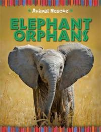 Animal Rescue: Elephant Orphans by Clare Hibbert