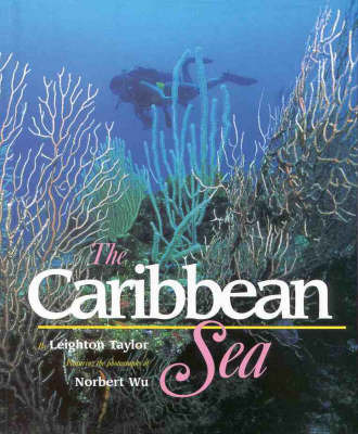 The Caribbean Sea by Leighton Taylor